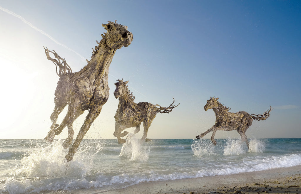 James Doran Webb Driftwood Horses Gallop