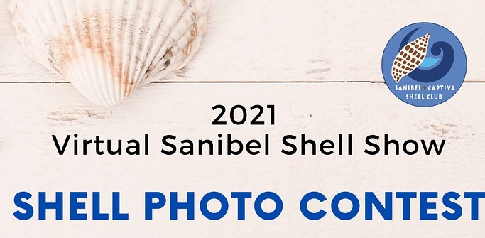 shell photo contest