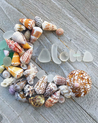 hawaiian shells and sea glass art