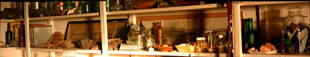 shelf in beachcombing museum