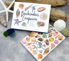 beachcombing book and journal