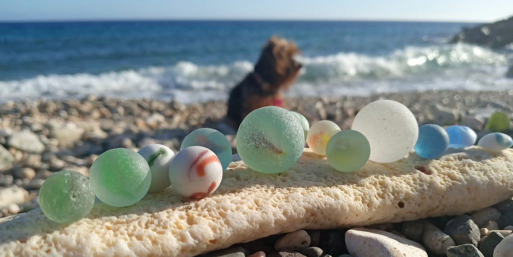 LC the dog and captain ky's sea glass marbles on beach