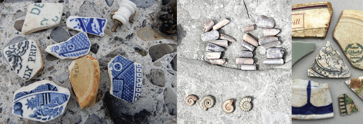 sea pottery and fossils from the beach