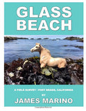james marino glass beach fort bragg book