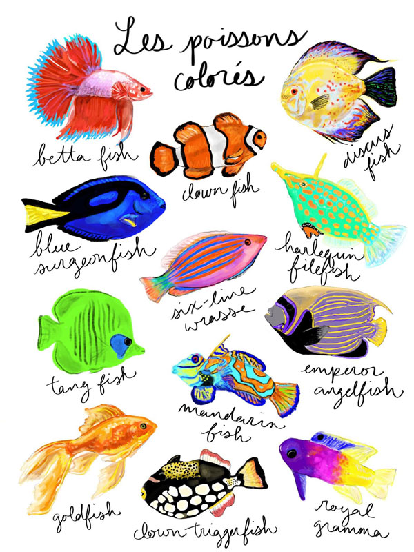 watercolor painting of colorful tropical fish
