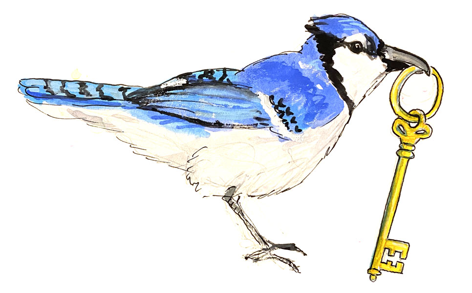 watercolor illustration of a bird with a key
