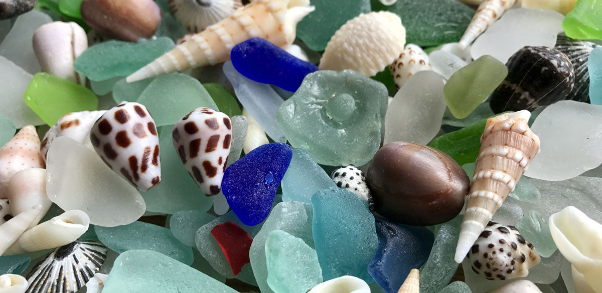 sea glass and shells from hawaii found by jj and pat caldwell