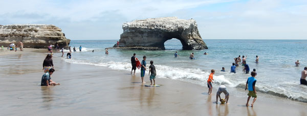 natural bridges beach santa cruz