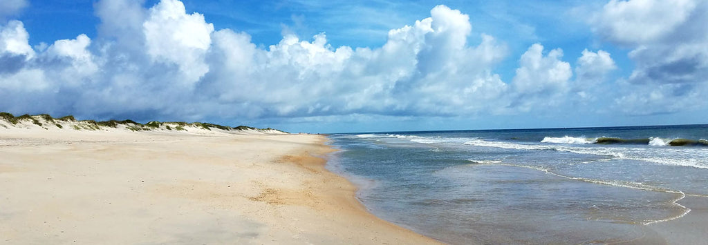 outer banks beachcombing