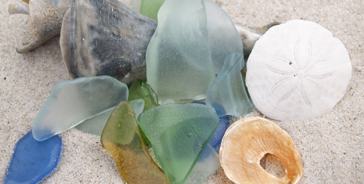sea glass and shells found in florida