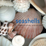 sea shells book