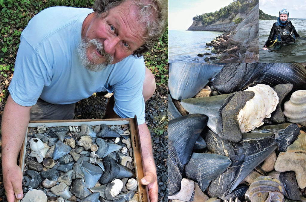 Steve Gladhill shark fossil collector