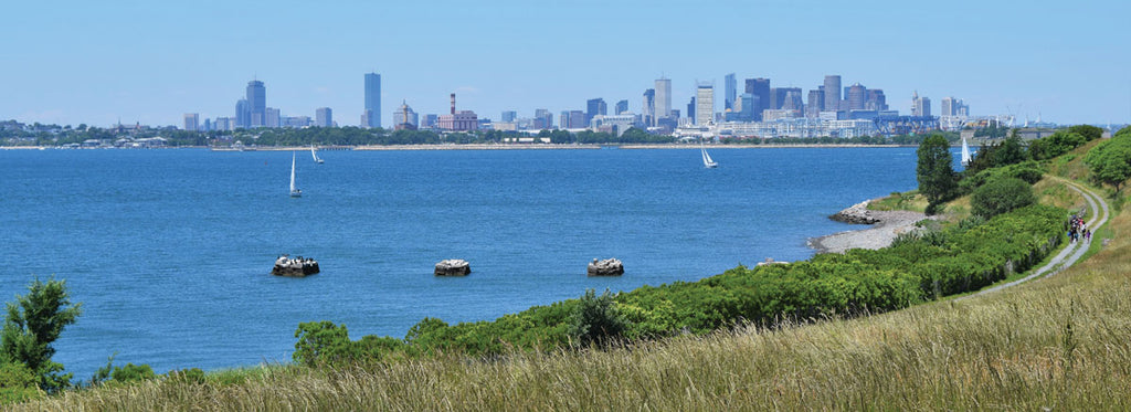 view of boston from spectacle island