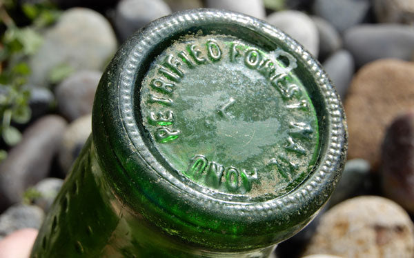 sprite petrified forest bottle