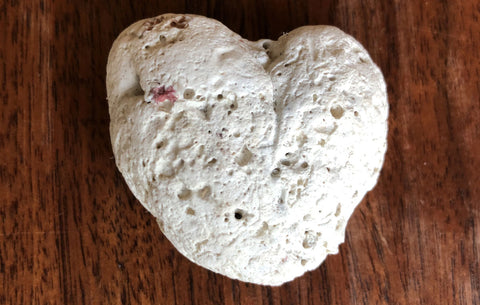 heart shaped coral found on beach