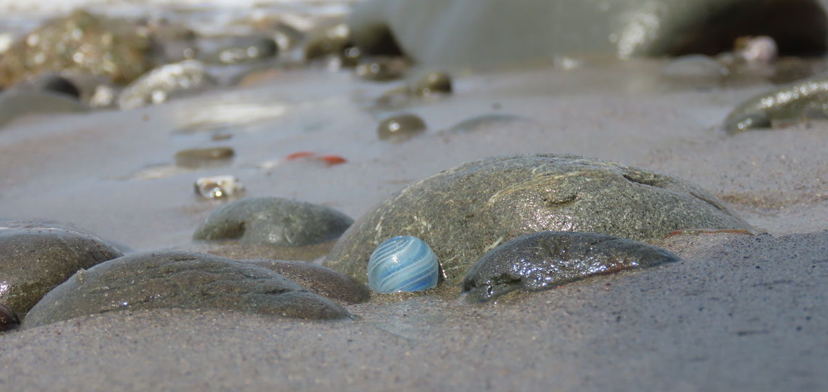 where to find sea marbles