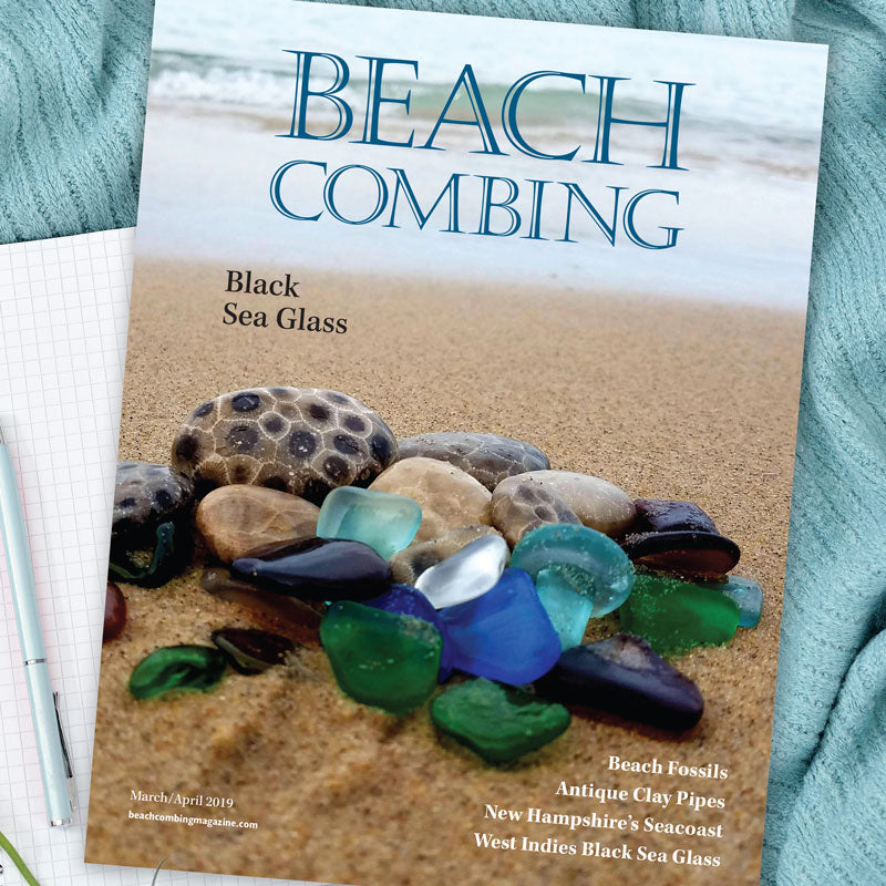 Beachcombing Volume 11: March/April 2019