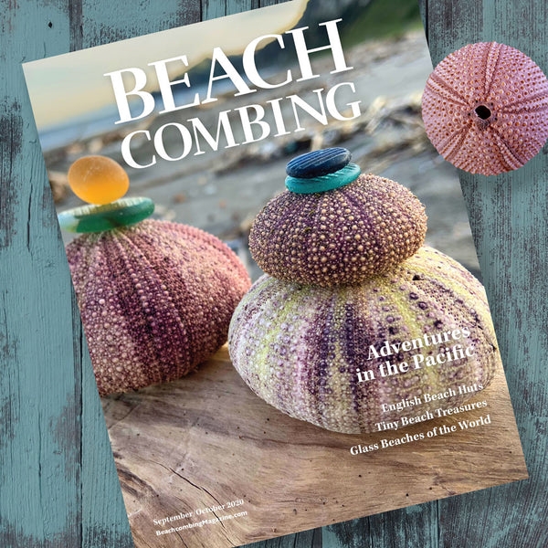 Beachcombing September/October 2020 Issue - FREE U.S. Shipping