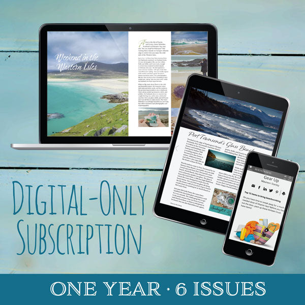 Beachcombing, One-Year Digital Subscription