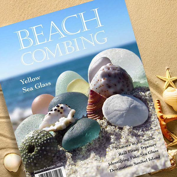 Beachcombing January/February 2019 Issue