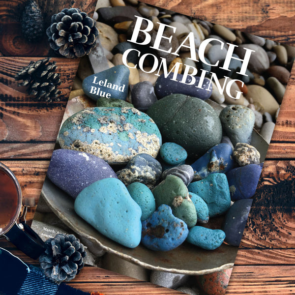 Beachcombing Volume 17: March/April 2020