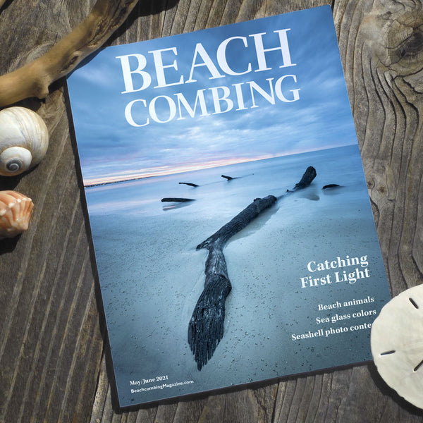 Beachcombing Volume 24: May/June 2021