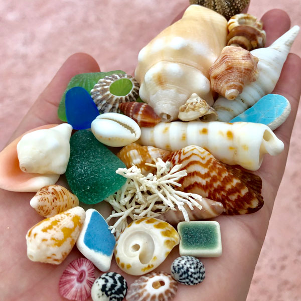 Beachcombing July/August 2019 Issue
