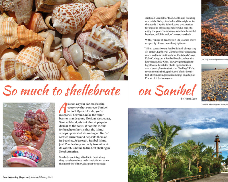 Beachcombing Magazine, One-Year Subscription