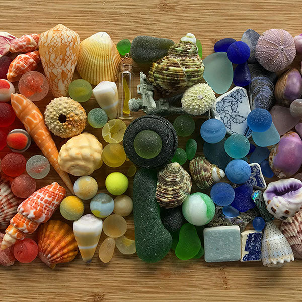Beachcombing, One-Year Subscription - FREE U.S. Shipping