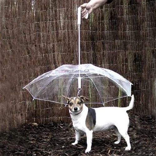 Dogbrella - dogs-over-everything