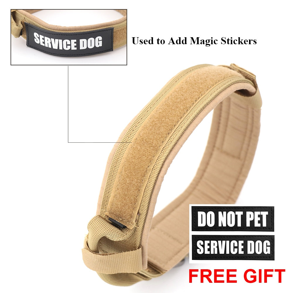 Dog Collar - Adjustable