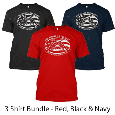 2nd Amendment the Only Permit I Need - Buy 2 Get 1 FREE T-Shirt Bundle