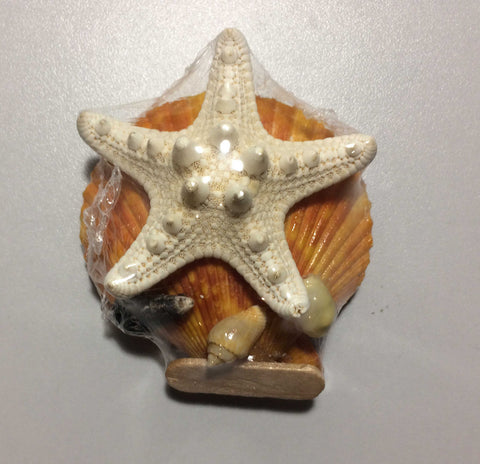 Scallop & Starfish Shell Fridge Magnet