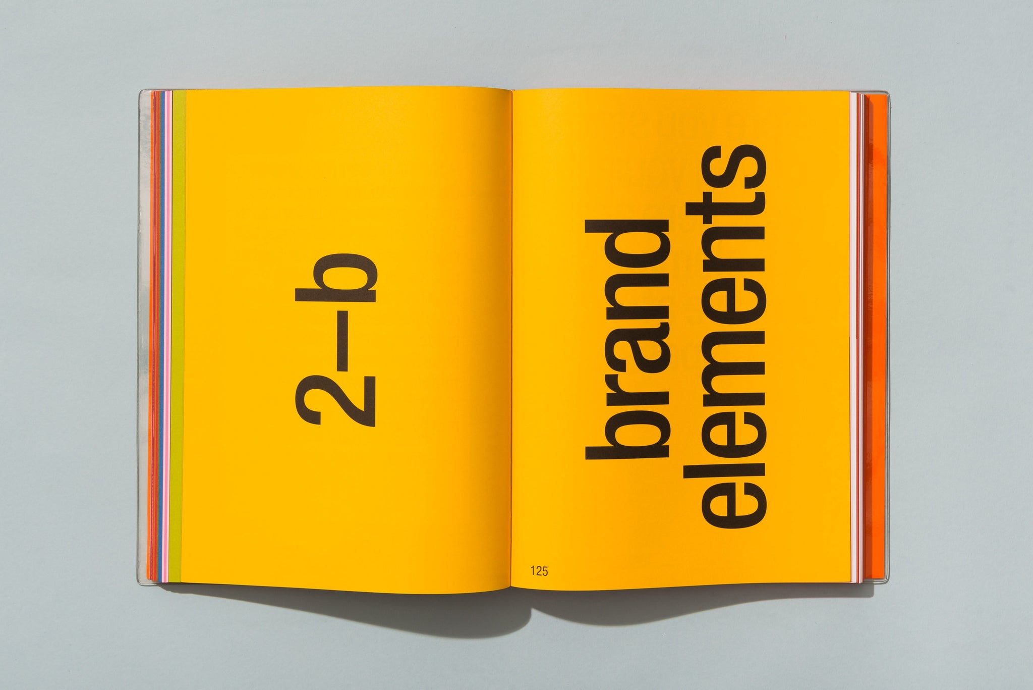 typography book design