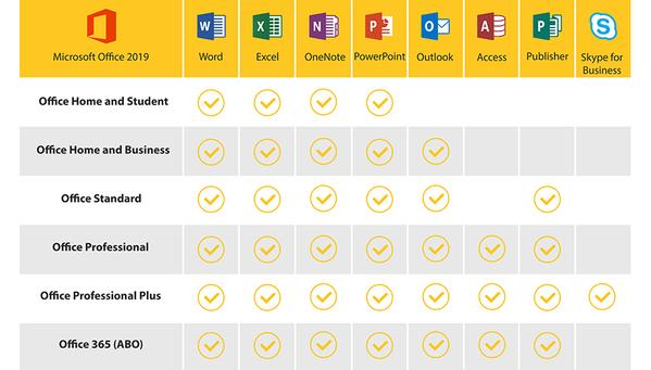 office 2019 professional plus vs home and business