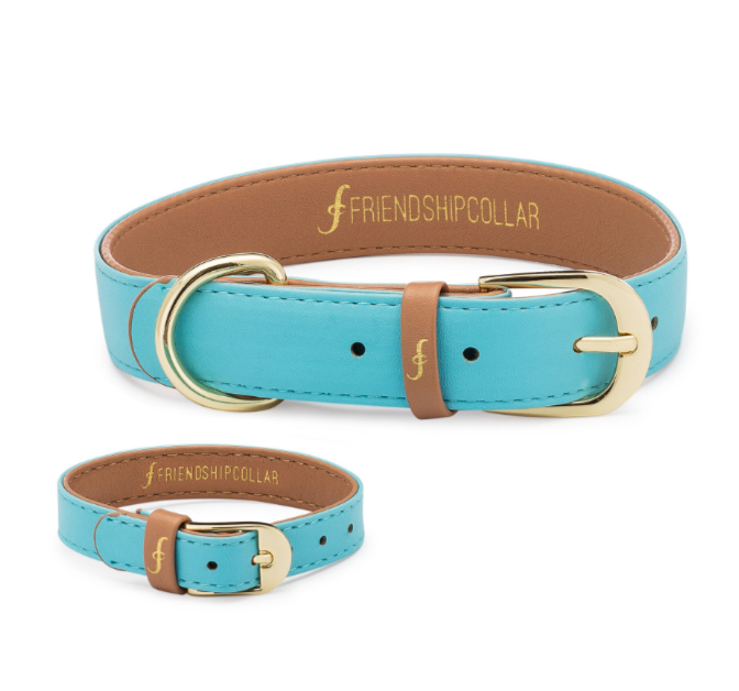 Azure Dog Collar and Matching Bracelet For You! - Vegan - Feeds 4 shelter pups! - Give Back Goods