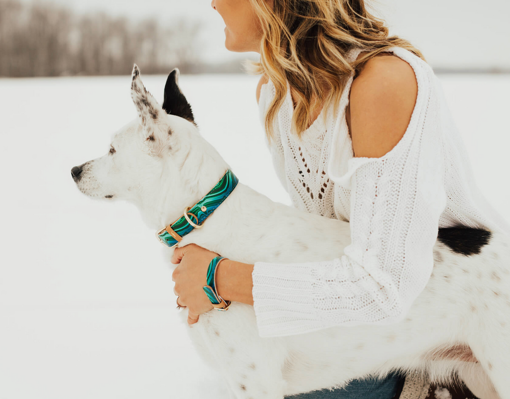 Malachite Dog Collar and Matching Bracelet For You! - Vegan - Feeds 4 shelter pups! - Give Back Goods