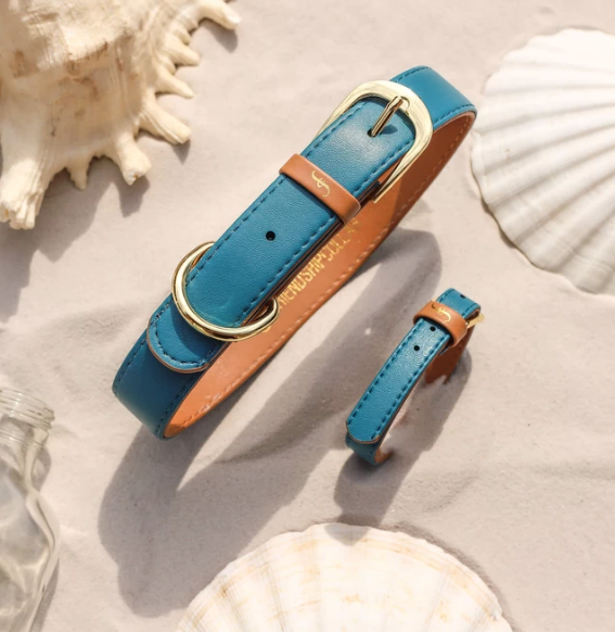 Sea Foam Turquoise Blue Dog Collar and Matching Bracelet For You! - Vegan - Feeds 4 shelter pups!