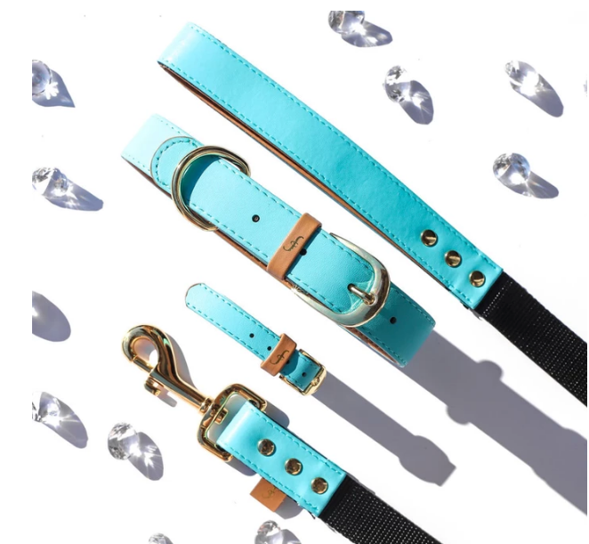 Turquoise Vegan Dog Leash - Feeds 4LBS of food to shelter pups!