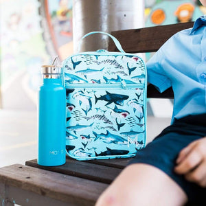 Insulated lunch bag- light blue in colour with sharks all over it and a blue water bottle