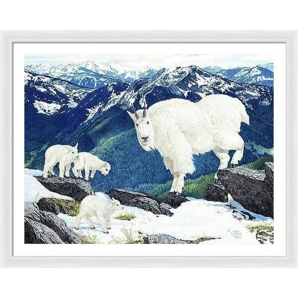 Mountain Goats and Kids - Framed Print