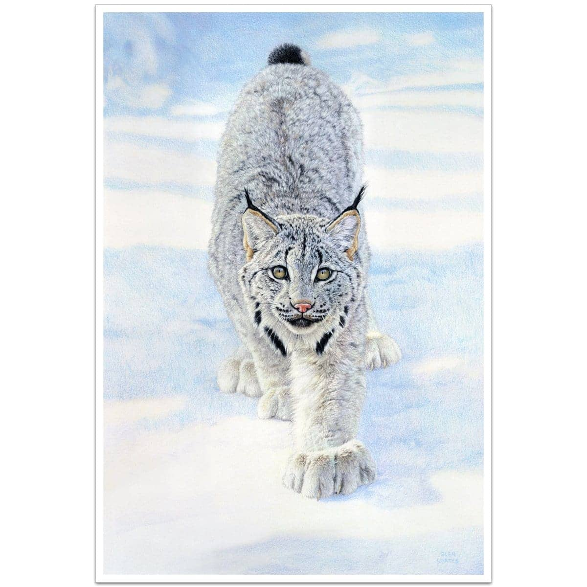 Stalking Lynx - Art Print by Glen Loates from the Glen Loates Store