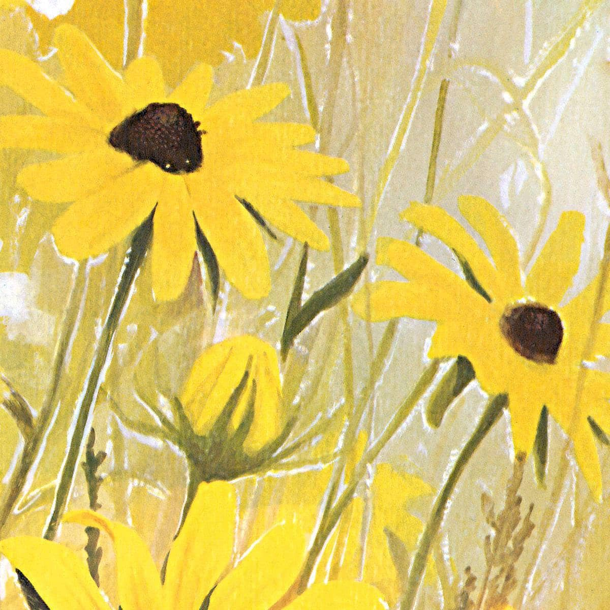 Black Eyed Susan - Art Print