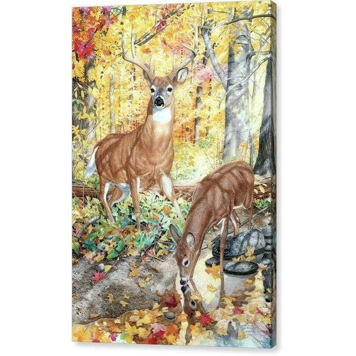 Autumn Deer - Canvas Print - The Official Glen Loates Store