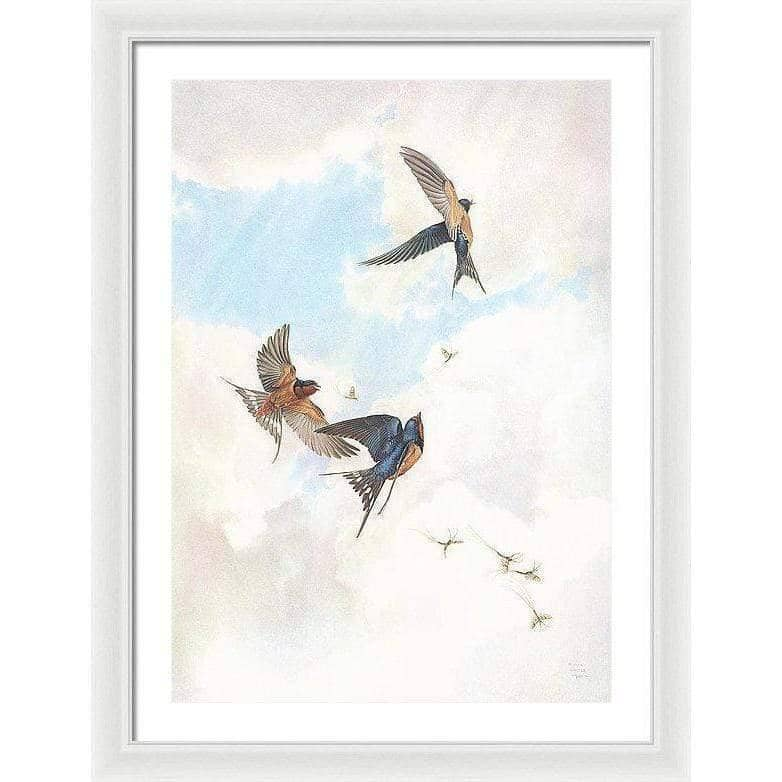Barn Swallows - Framed Print-Framed Print-The Official Glen Loates Store