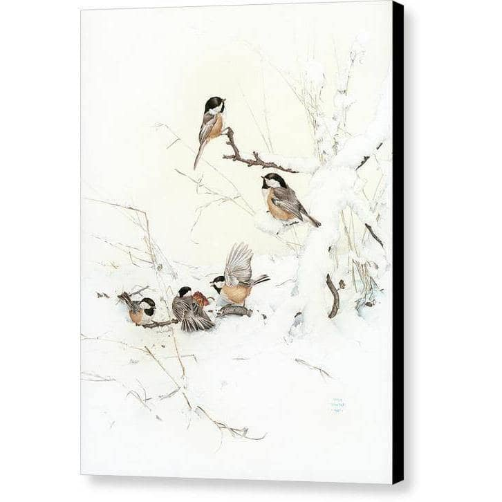 Black-Capped Chickadees - Canvas Print - The Official Glen Loates Store