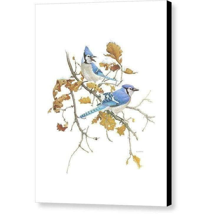Blue Jays - Canvas Print-Canvas Print-The Official Glen Loates Store