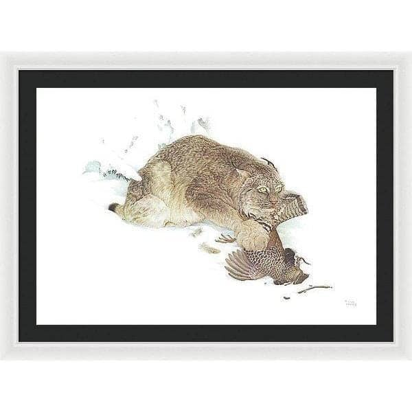 Canada Lynx with Ruffed Grouse- Framed Print by Glen Loates from the Glen Loates Store