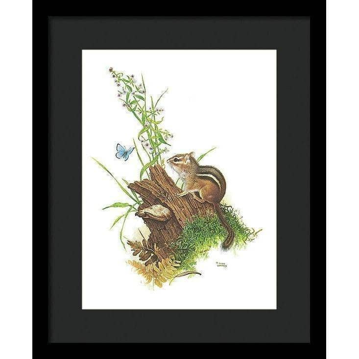 Chipmunk and Woodland Blue Butterfly - Framed Print-Framed Print-The Official Glen Loates Store