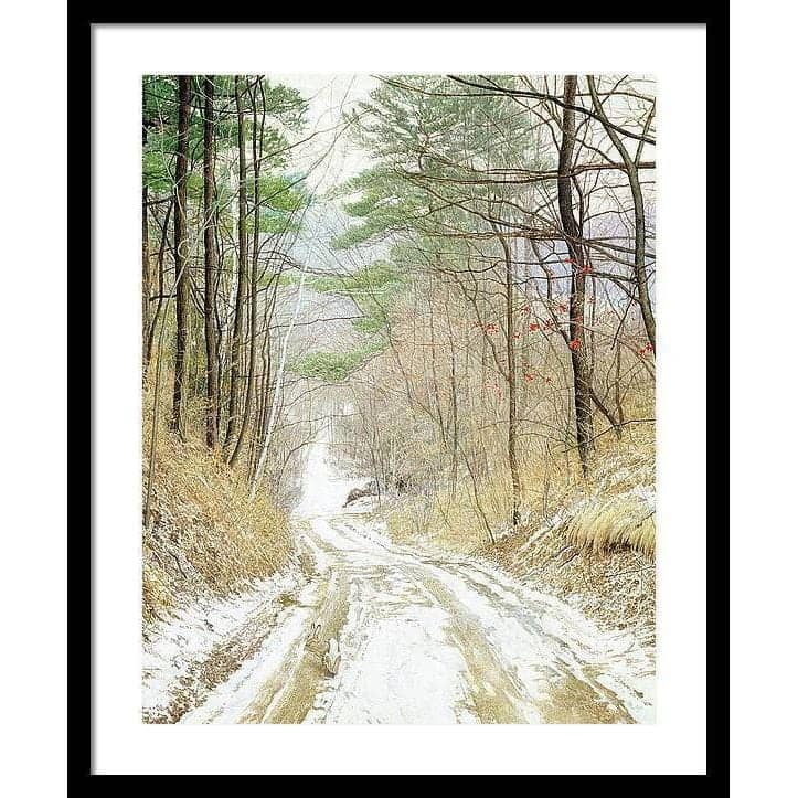 Cottontail Run - Framed Print by Glen Loates from the Glen Loates Store